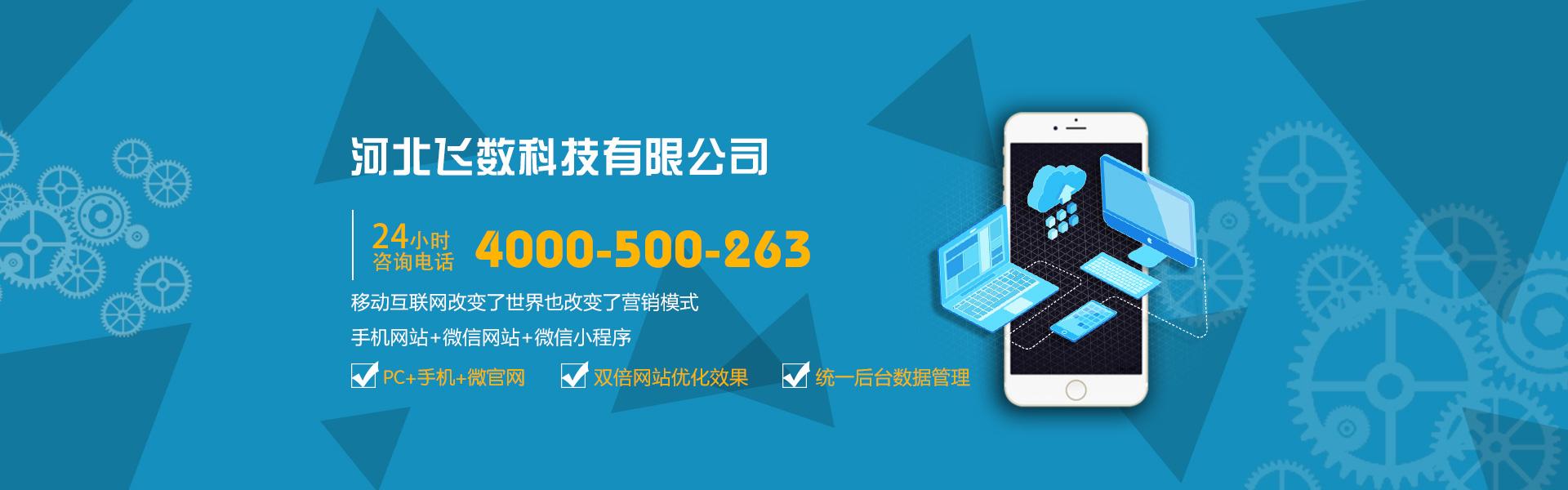 石家庄网络营销与网站制作推广公司
