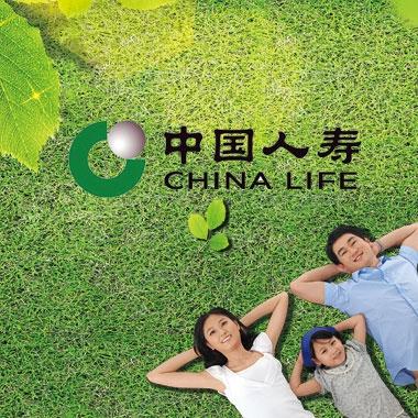 赤城中国人寿
