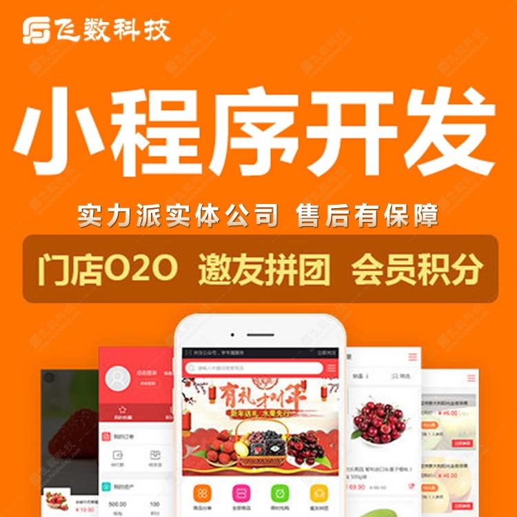 石家庄微网站定制开发